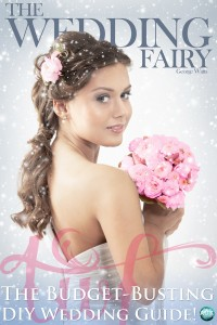 the wedding fairy book