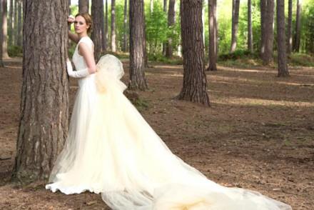 wedding dress banner