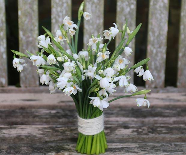 lock cottage flowers