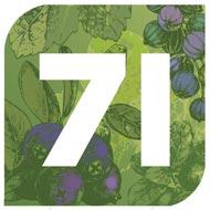 gin 71