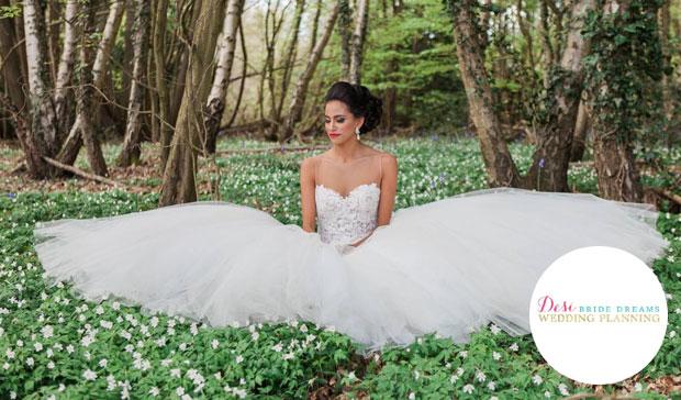 desi bride dreams