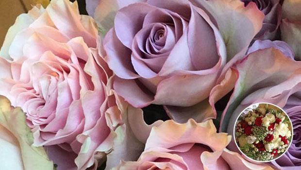 flowers by geraldine