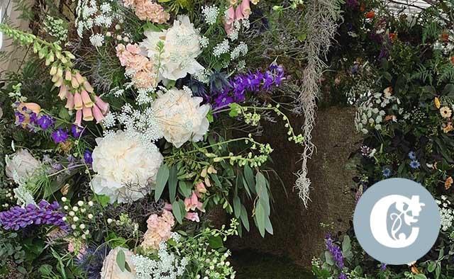 campbells florist