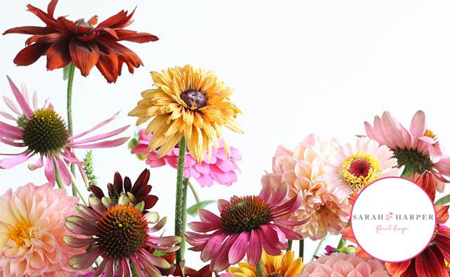 sarah harper florist