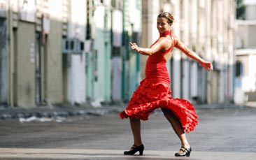flamenco, dinner and show hen party activity
