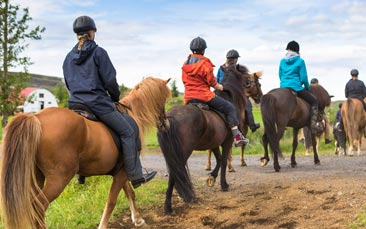 horse riding and clay shooting